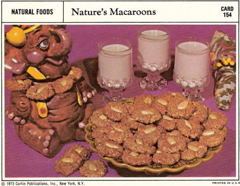 Nature's Macaroons